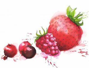 fraises, framboises, groseille : les fruits rouges sont l'un des meilleurs alliés santé contre le cancer
