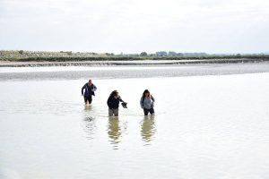 La traversée de la baie de Somme à pied : un moment enchanté et hors du temps, à partager avec vos proches