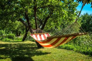 le hamac et le bonheur de faire la sieste à l'ombre pendant les vacances
